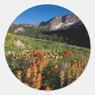 USA, Utah, Uinta-Wasatch-Cache National Forest Classic Round Sticker