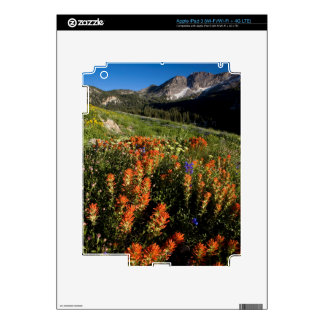 USA, Utah, Uinta-Wasatch-Cache National Forest iPad 3 Decals