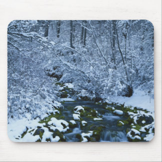 USA, Utah, Wasatch-Catch National Forest, Mouse Pad