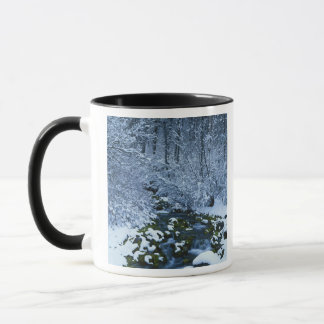 USA, Utah, Wasatch-Catch National Forest, Mug