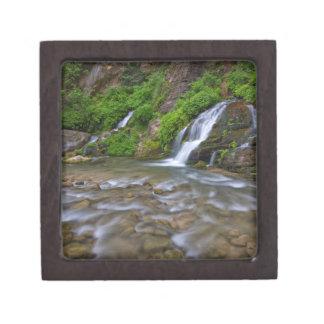 USA, Utah, Zion National Park.  Big Springs in Gift Box