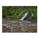 USA, Utah, Zion National Park.  Big Springs in Postcard