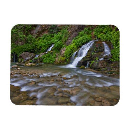 USA, Utah, Zion National Park.  Big Springs in Rectangular Photo Magnet