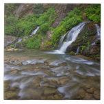 USA, Utah, Zion National Park.  Big Springs in Tile