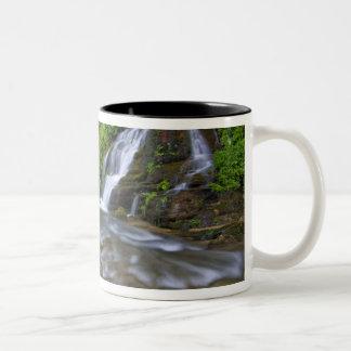 USA, Utah, Zion National Park.  Big Springs in Two-Tone Coffee Mug