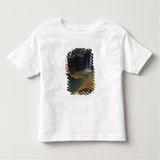 USA, Utah, Zion National Park.  Keyhole Falls in Toddler T-shirt
