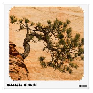 USA, Utah, Zion National Park. Pine tree Wall Decal