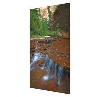 USA, Utah, Zion National Park. Scenic from 2 Canvas Print