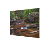 USA, Utah, Zion National Park. Scenic from 4 Gallery Wrap Canvas