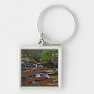 USA, Utah, Zion National Park. Scenic from 4 Keychain