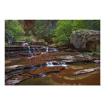 USA, Utah, Zion National Park. Scenic from 4 Photo Print