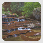 USA, Utah, Zion National Park. Scenic from 4 Square Sticker