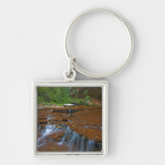 USA, Utah, Zion National Park. Scenic from Keychain