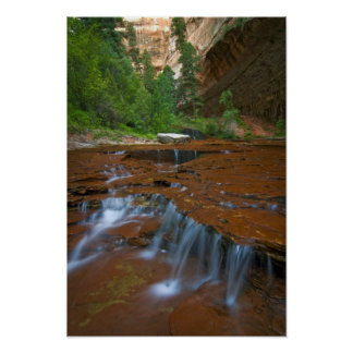 USA, Utah, Zion National Park. Scenic from Poster