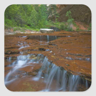 USA, Utah, Zion National Park. Scenic from Square Sticker