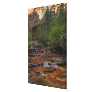 USA, Utah, Zion National Park.  Scenic from the Canvas Print