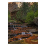 USA, Utah, Zion National Park.  Scenic from the Greeting Card