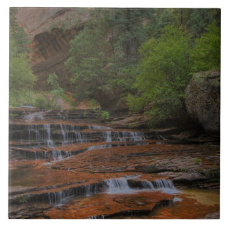 USA, Utah, Zion National Park.  Scenic from the Ceramic Tile
