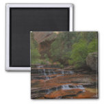 USA, Utah, Zion National Park.  Scenic from the Magnet
