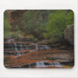 USA, Utah, Zion National Park.  Scenic from the Mousepads