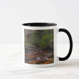 USA, Utah, Zion National Park.  Scenic from the Mug