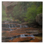 USA, Utah, Zion National Park.  Scenic from the Tile