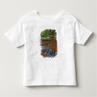 USA, Utah, Zion National Park. Scenic from Toddler T-shirt