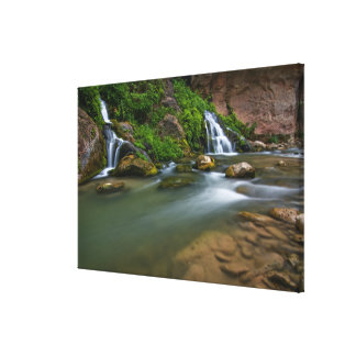 USA, Utah, Zion National Park. The Virgin Canvas Print