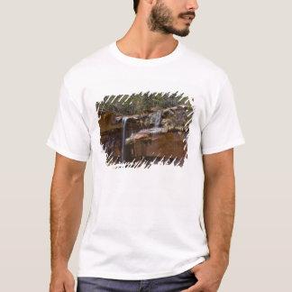 USA, Utah, Zion National Park, Water Falls at T-Shirt