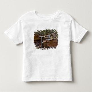 USA, Utah, Zion National Park, Water Falls at Toddler T-shirt