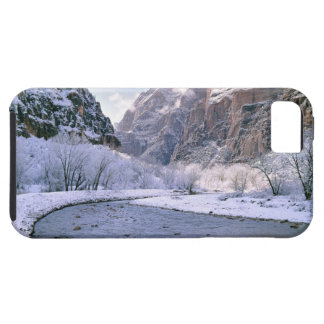 USA, Utah, Zion NP. New snow covers the canyon