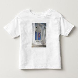 USA, VA, Arlington. American Flags are hung Toddler T-shirt
