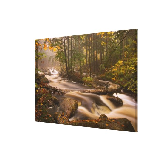USA, Vermont, East Arlington, Flowing streams 2 Canvas Print