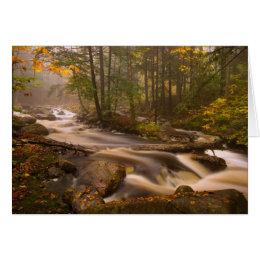 USA, Vermont, East Arlington, Flowing streams 2 Card