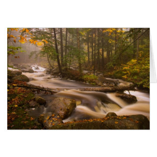 USA Vermont East Arlington Flowing streams 2 Greeting Card