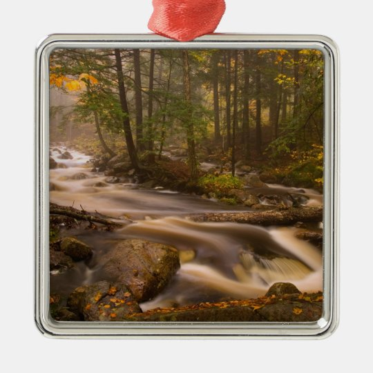USA, Vermont, East Arlington, Flowing streams 2 Metal Ornament