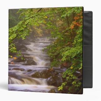 USA, Vermont, East Arlington, Flowing streams Binder