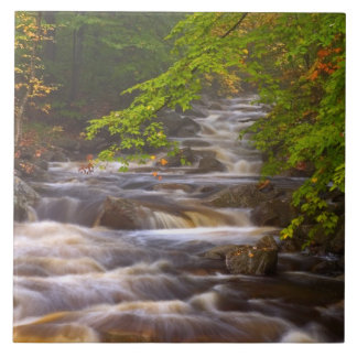 USA, Vermont, East Arlington, Flowing streams Ceramic Tile