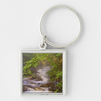 USA, Vermont, East Arlington, Flowing streams Keychain
