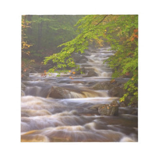 USA, Vermont, East Arlington, Flowing streams Memo Notepad