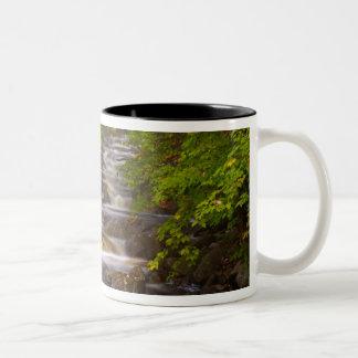 USA, Vermont, East Arlington, Flowing streams Coffee Mug