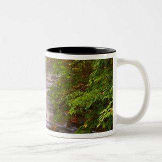 USA, Vermont, East Arlington, Flowing streams Mugs