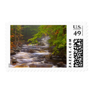 USA, Vermont, East Arlington, Flowing streams Postage Stamp