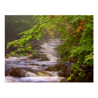 USA Vermont East Arlington Flowing streams Postcard