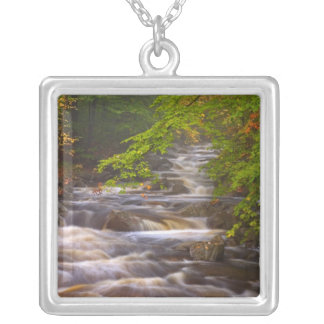 USA, Vermont, East Arlington, Flowing streams Silver Plated Necklace
