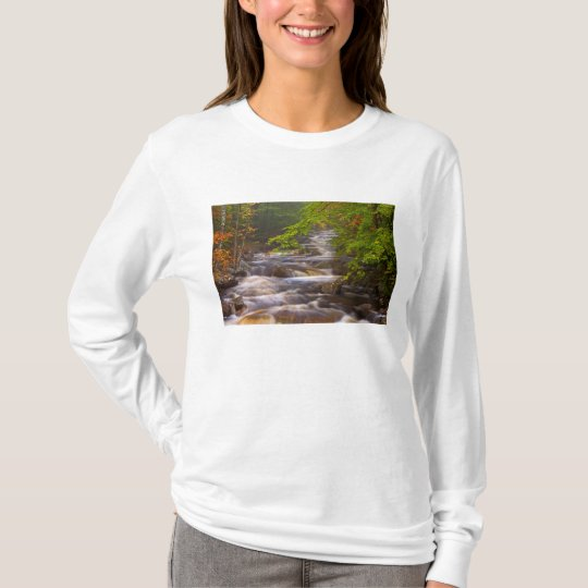 USA, Vermont, East Arlington, Flowing streams T-Shirt