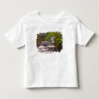 USA, Vermont, East Arlington, Flowing streams T Shirt