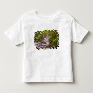 USA, Vermont, East Arlington, Flowing streams Toddler T-shirt