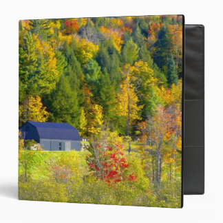 USA, Vermont. Fall foilage along Highway 100. Binders