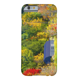 USA, Vermont. Fall foilage along Highway 100. Barely There iPhone 6 Case